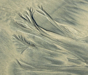 Patterns in the sand, Long Beach.